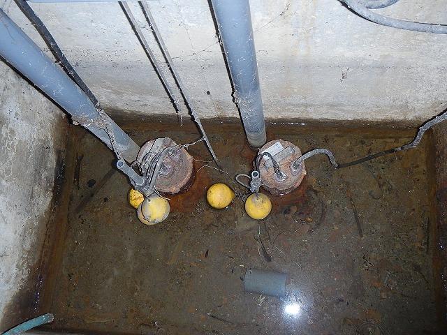 排水ポンプ前