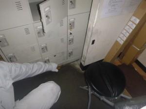 ロッカー下部に薬剤処理を実施。