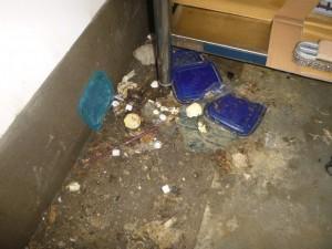 アイスボックス裏に長期ゴミ堆積のため異臭発生。ゴミを回収。