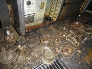 製氷機の下部・裏に堆積したゴミにチャバネゴキブリ生息