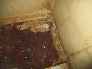 バックヤード冷蔵チャンバー下に隙間