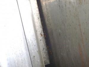 厨房・冷蔵庫裏・麺茹機裏と壁面の隙間にチャバネゴキブリ生息