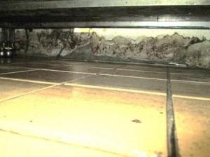 壁面にネズミの侵入経路と思われる破損箇所2