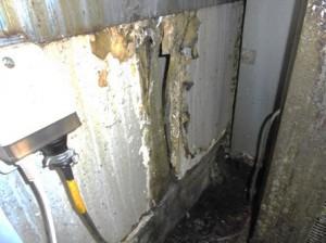 厨房機器裏壁面にネズミの侵入出来る穴