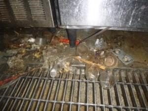 機器下部に堆積したゴミの中にチャバネゴキブリ生息