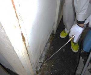 厨房 壁面の破損個所に薬剤処理を実施致しました