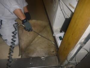 カウンター内床面剥がれ部内に薬剤処理を実施