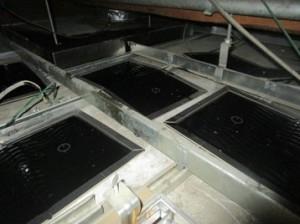天井裏に粘着トラップ設置