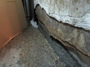 厨房壁面にネズミの侵入口